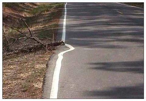 در این تصویر، هدف تیم خط کشی، «خط کشی» بوده است و نه هدایت خودروها در جاده و بنابراین بدون اینکه برای مشکل پیش آمده (تنه درخت مانع) راه حلی اندیشیده شود، خط کشی انجام شده است.